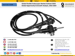 Global Flexible Endoscopes Market Outlook 2024:  Global Opportunity & Growth Analysis, 2016-2024