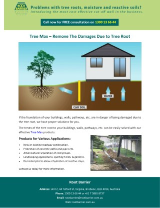 Tree Max – Remove The Damages Due to Tree Root