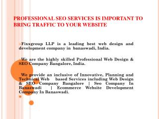 PROFESSIONAL SEO SERVICES IS IMPORTANT TO BRING TRAFFIC TO YOUR WEBSITE