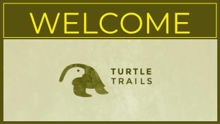 Motorcycle Tours and Yoga Retreat in India | Turtle Trails