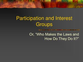Participation and Interest Groups