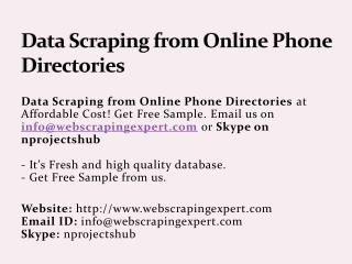 Data Scraping from Online Phone Directories