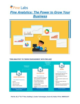 The Power to Grow your Business- Pine Analytics