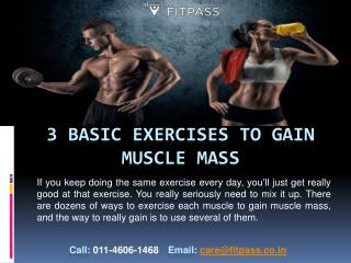 3 BASIC EXERCISES TO GAIN MUSCLE MASS