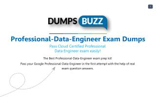 Valid Professional-Data-Engineer Exam VCE PDF New Questions