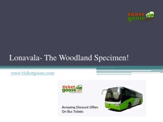 Lonavala- The Woodland Specimen!
