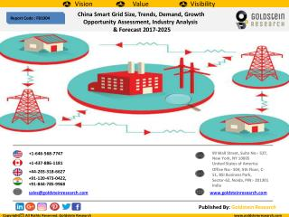 China Smart Grid Size, Trends, Demand, Growth  Opportunity Assessment, Industry Analysis   & Forecast 2017-2025