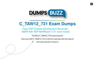 Get real C_TAW12_731 VCE Exam practice exam questions