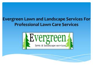 Welcome to evergreen lawn and landscape services for professional lawn care services