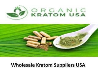 Wholesale kratom Suppliers USA