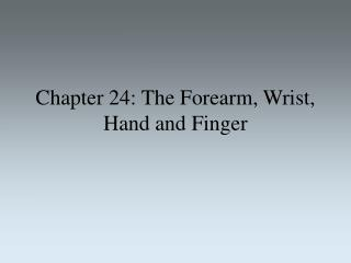 Chapter 24: The Forearm, Wrist, Hand and Finger