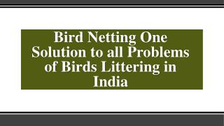 Use Society Bird Netting To Get Rid Of Unwanted Birds