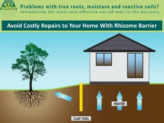 Avoid Costly Repairs to Your Home With Rhizome Barrier