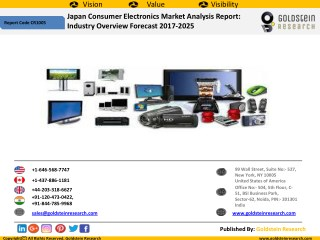 Japan Consumer Electronics Industry