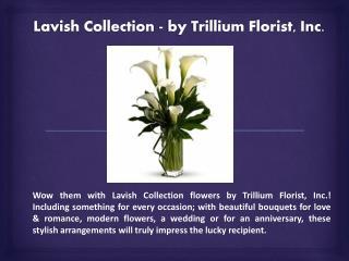 Lavish Flower Collection - by Trillium Florist, Inc
