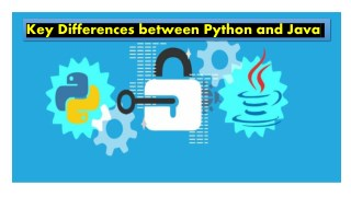 Key Differences between Python and Java