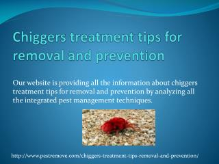 CHIGGERS TREATMENT TIPS FOR REMOVAL AND PREVENTION