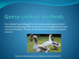 GEESE CONTROL METHODS