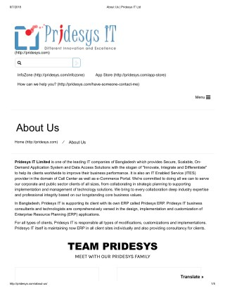 About Us | Pridesys IT Ltd