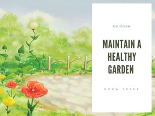 Maintain a healthy garden