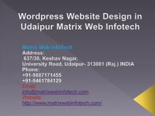Wordpress Website Design in Udaipur Matrix Web Infotech