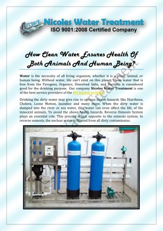 How Clean Water Ensures Health Of Both Animals And Human Being?