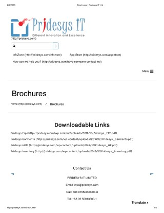 Brochures | Pridesys IT Ltd