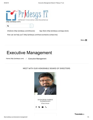 Executive Management Board | Pridesys IT Ltd