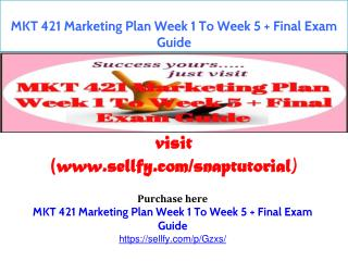 MKT 421 Marketing Plan Week 1 To Week 5   Final Exam Guide