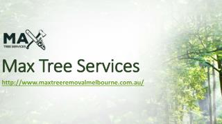 Tree Stump Grinding Melbourne | Max Tree Services