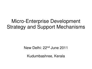 Micro-Enterprise Development Strategy and Support Mechanisms