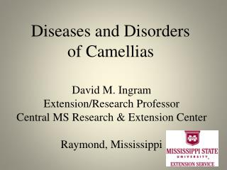 Diseases and Disorders of Camellias