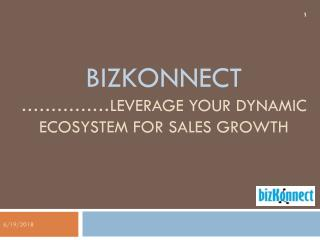 BizKonnect - Actionable Sales Intelligence Solution - Delivery Model