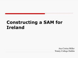 Constructing a SAM for Ireland