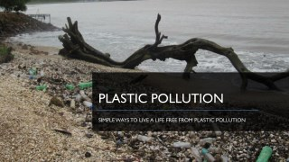 Simple Ways to Live a Life Free From Plastic Pollution