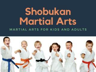 Perth martial arts classes | Shobukan Martial Arts