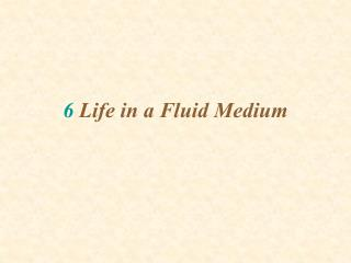 6 Life in a Fluid Medium