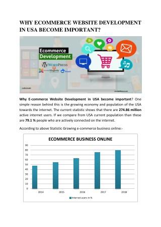 ECommerce Website Development in USA
