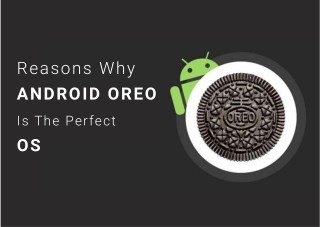 Reasons Why Android OREO is The Perfect OS