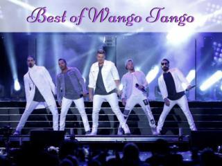 Best of Wango Tango