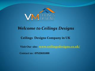 Residential Ceilings Services