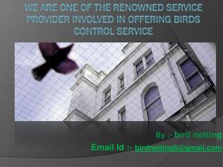 Spikes offers bird control service in India like anti bird netting