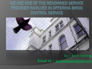 Nets n Spikes offers bird control service in India like anti bird netting