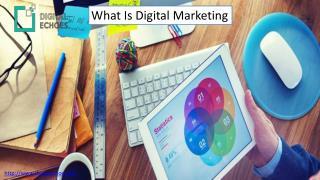 Reliable Digital Marketing Strategies | Digital Echoes