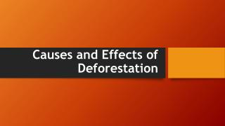 Causes and Effects of Deforestation