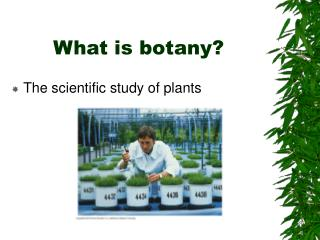 What is botany?