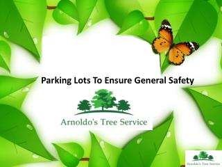 Parking Lots To Ensure General Safety