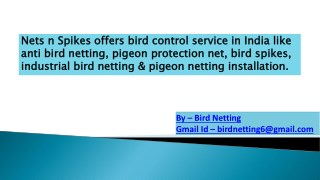 These are just an alternative for bird protection net