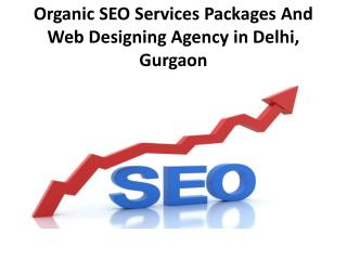 Cheap Rate Web Designing And Seo Services Packages in Delhi, Gurgaon