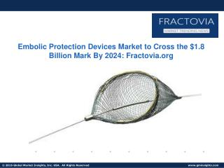 Embolic Protection Devices Market: Current Business Trends & Growth Opportunities 2017-2024